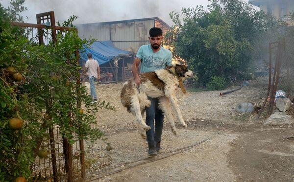 Мужчина несет свою собаку, которую спас из горящего дома в Манавгате, Анталья - Sputnik Азербайджан