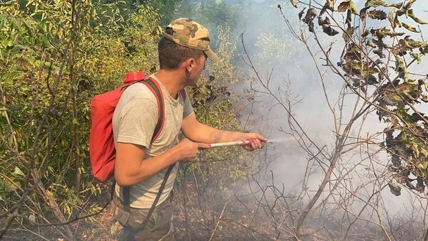 Тушение пожара у села Хонуба Ярдымлинского района - Sputnik Azərbaycan