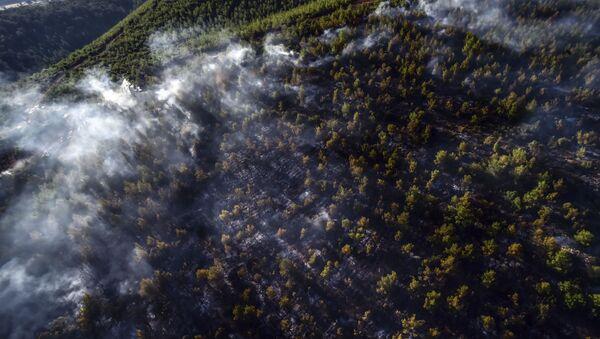 Лесной пожар в Мармарисе, Турция - Sputnik Azərbaycan