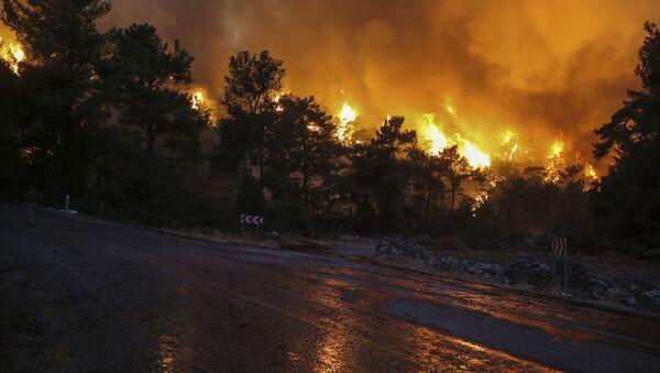 Лесной пожар в Турции, фото из архива - Sputnik Azərbaycan