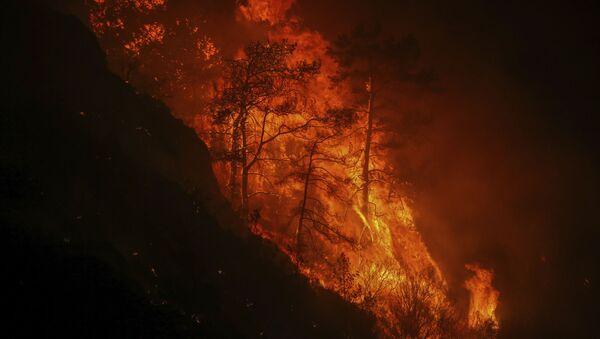 Лесной пожар в Турции, фото из архива - Sputnik Азербайджан