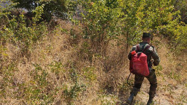 Пожарные МЧС борются с огнем в горах Агсу - Sputnik Азербайджан