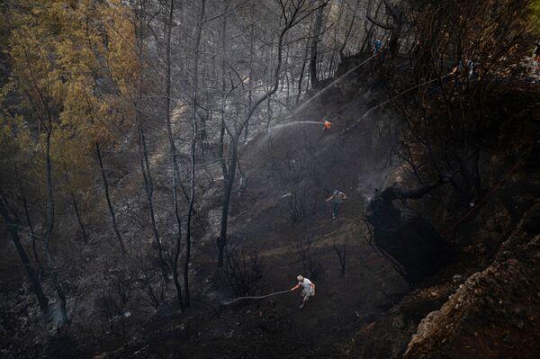 Пожары уничтожили огромные участки леса в курортных турецких провинциях Анталья и Мугла. - Sputnik Азербайджан