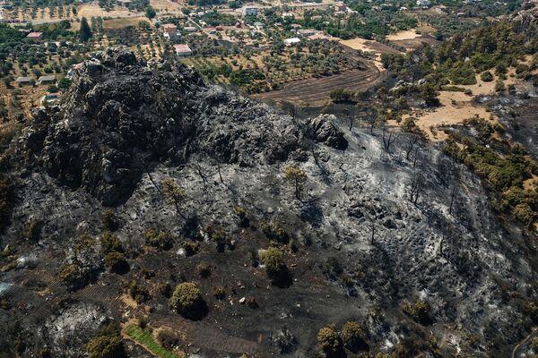 Сгоревший лесной массив в Мугле. - Sputnik Азербайджан