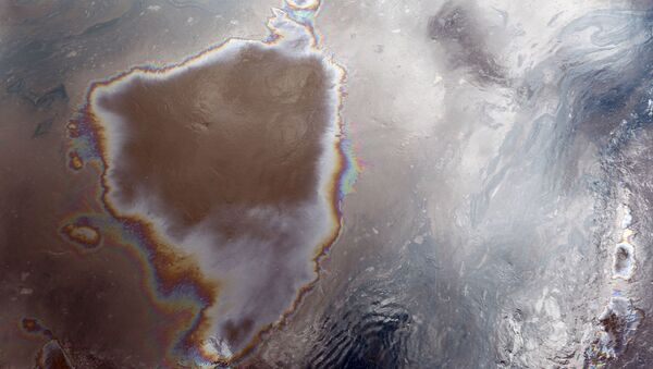 Разлив нефти в Новгородской области - Sputnik Азербайджан