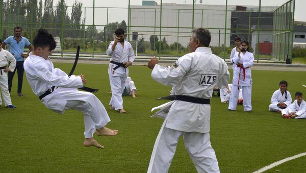 Lənkəranda karate-do üzrə çempionat - Sputnik Azərbaycan