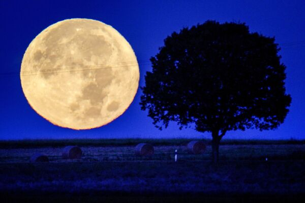 Полная луна заходит за холмы региона Таунус, Германия. - Sputnik Азербайджан