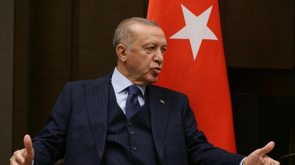 Президент РФ В. Путин провел переговоры с президентом Турции Р. Эрдоганом - Sputnik Azərbaycan