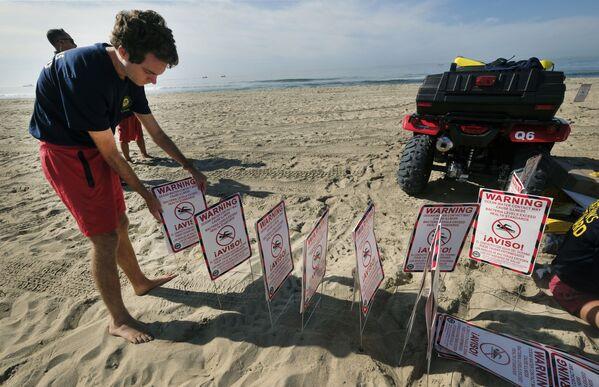 Спасатели выставляют на пляжах предупреждающие знаки. На побережье также не рекомендуется гулять и заниматься спортом. - Sputnik Азербайджан
