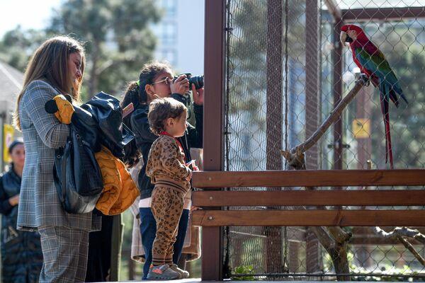 Реконструкция зоопарка была проведена по инициативе руководителя общественного объединения IDEA Лейлы Алиевой. - Sputnik Азербайджан