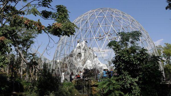 В гостях у животных: Бакинский зоопарк вновь принимает посетителей - Sputnik Азербайджан