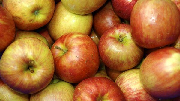 Apples - Sputnik Azərbaycan