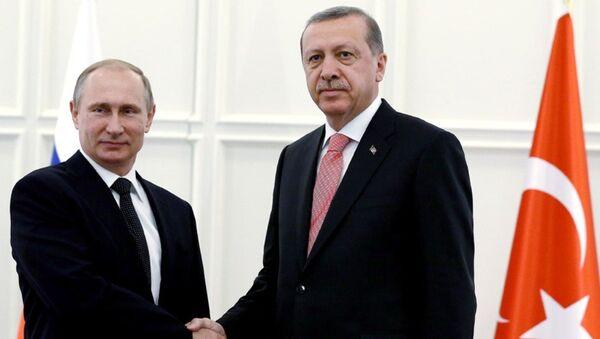 Встреча президентов Турции и РФ - Sputnik Азербайджан