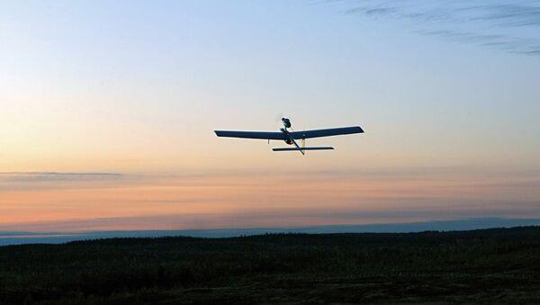 Беспилотный летательный аппарат (БПЛА) - Sputnik Азербайджан
