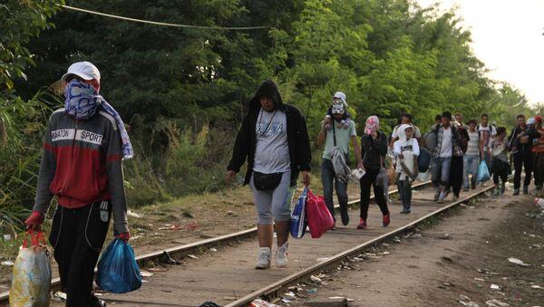 Ситуация на венгерско-сербской границе - Sputnik Azərbaycan