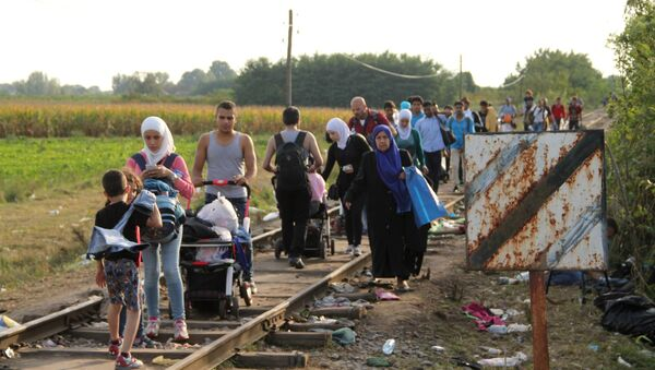 Ситуация на венгерско-сербской границе - Sputnik Азербайджан