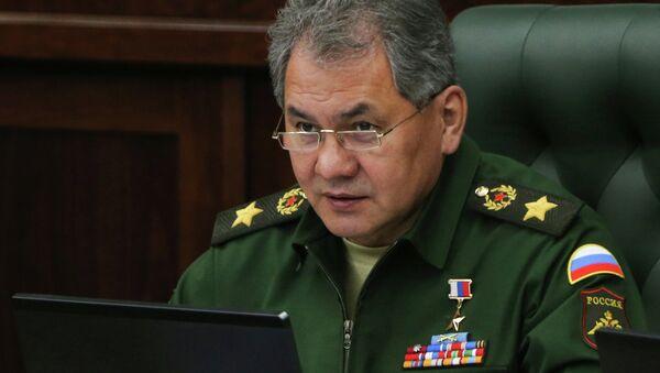Sergey Şoydu - Sputnik Azərbaycan