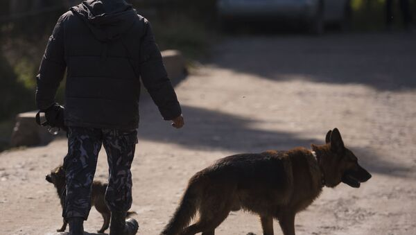 Операция правоохранительных органов Киргизии в Бишкеке - Sputnik Азербайджан