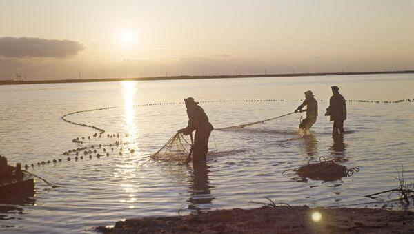 Рыбаки на Каспии - Sputnik Азербайджан