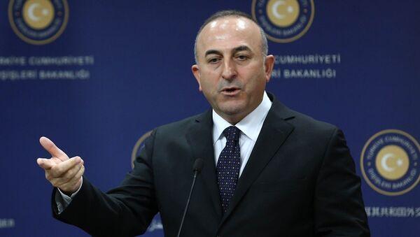 Mövlud Çavuşoğlu - Sputnik Azərbaycan
