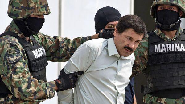 Задержание мексиканского наркобарона по кличке Коротышка. Архивное фото - Sputnik Азербайджан