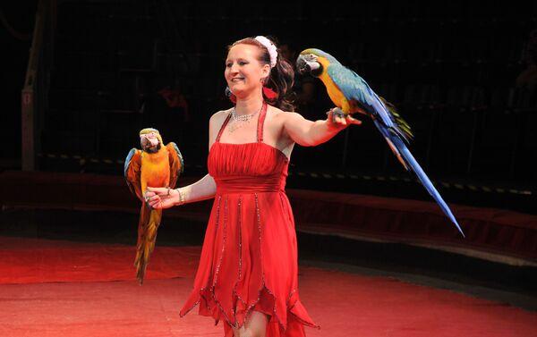 Зритель хочет видеть на арене цирка животных - Sputnik Азербайджан