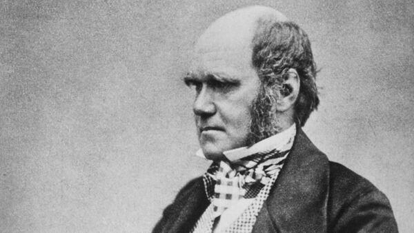Чарльз Роберт Дарвин в 1854 году - Sputnik Азербайджан