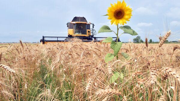 Сельскохозяйственные работы. Архивное фото - Sputnik Азербайджан