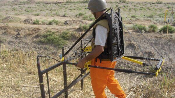 Сотрудник ANAMA занимается разминированием территории. Архивное фото - Sputnik Азербайджан