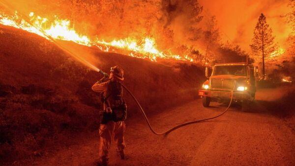 Лесной пожар. Архивное фото - Sputnik Азербайджан