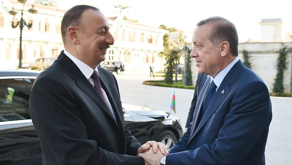 Встреча президента Азербайджана Ильхама Алиева и президента Турции Реджепа Тайипа Эрдогана - Sputnik Азербайджан