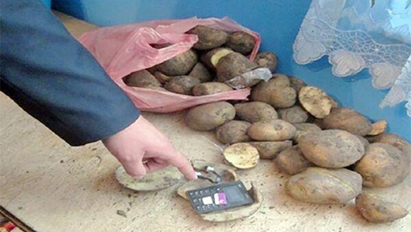 Kartofun içindən telefon çıxdı - Sputnik Azərbaycan