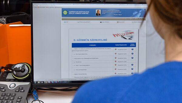 Использование электронных таможенных услуг - Sputnik Азербайджан