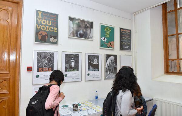 Я не умею говорить, ты мой голос – выставка в Kapellhaus - Sputnik Азербайджан