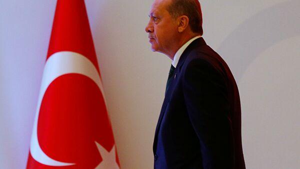 Türkiyə Prezidenti Rəcəb Tayyip Ərdoğan - Sputnik Azərbaycan