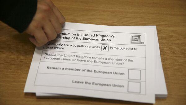 Должно ли Соединенное Королевство остаться членом Европейского союза? - Sputnik Азербайджан
