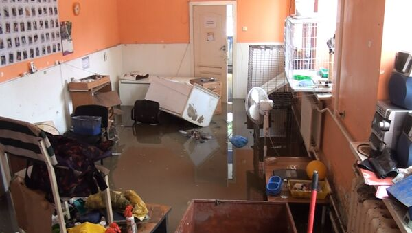 Ростов пережил конец света: последствия наводнения - Sputnik Азербайджан