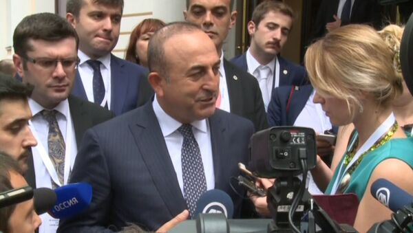 Я очень рад – глава МИД Турции о нормализации отношений с Россией - Sputnik Азербайджан