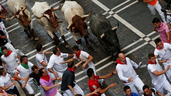 Забег быков по улицам испанской Памплоны - Sputnik Азербайджан