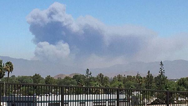 Kaliforniya ştatının San-Bernardino qəsəbəsində baş verən meşə yanğını - Sputnik Azərbaycan