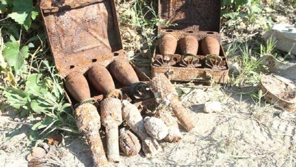 Всего было обнаружено более 85 взрывоопасных находок: артиллерийские снаряды калибра 76,2 мм, миномётные мины - 50мм, 81 и 82 мм, ручные гранаты разных образцов, взрыватели, запалы и стрелковые патроны. - Sputnik Азербайджан
