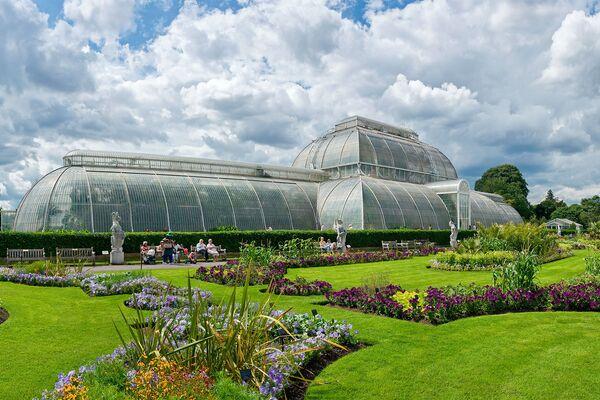 Комплекс ботанических садов и оранжерей Royal Botanic Gardens, Kew. Сады созданы были в 1759 году, а общая площадь равна 121 гектару - Sputnik Азербайджан
