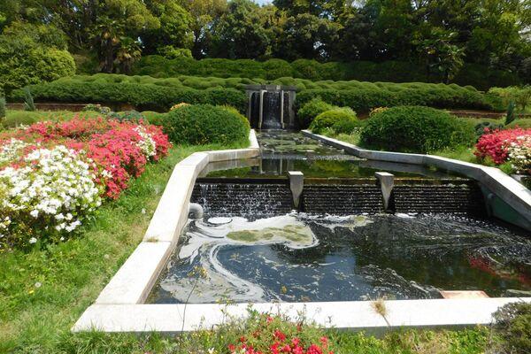 Ботанический сад Киото учрежден в 1924 году. Сейчас в саду представлено более 120 тысяч видов растений - Sputnik Азербайджан