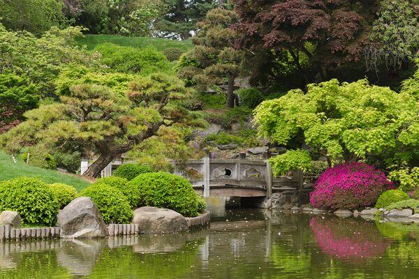 Бруклинский ботанический сад в Нью-Йорке. Основан в 1910 году. Общая площадь составляет 21 гектар - Sputnik Азербайджан