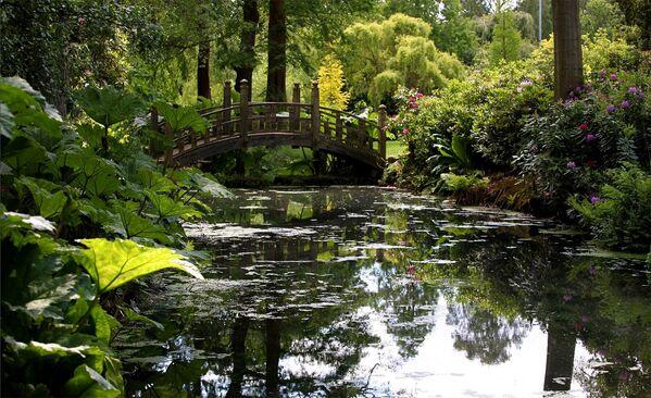 Ботанический сад Петра Великого в Санкт-Петербурге. Коллекция сада содержит более 80 тысяч экспонатов - Sputnik Азербайджан