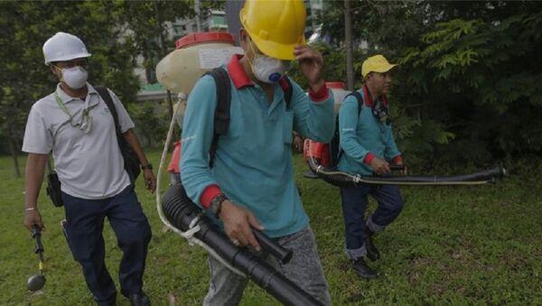 Malayziyada Zika virusuna ilk yoluxma halı baş verib - Sputnik Azərbaycan