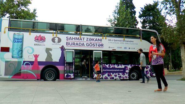 Шахматный автобус: прокатиться с ветерком или сыграть партию - Sputnik Азербайджан