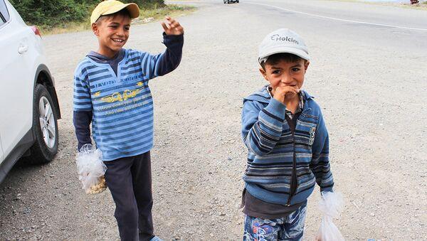 Маленькие продавцы орехов на дороге в Исмаиллы, архивное фото - Sputnik Азербайджан