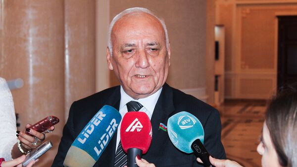 AMEA Tarix İnstitutunun direktoru, professor Yaqub Mahmudov - Sputnik Azərbaycan