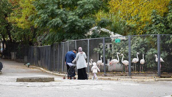 Bakı zooloji parkı - Sputnik Azərbaycan